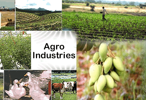 agro based industries in india